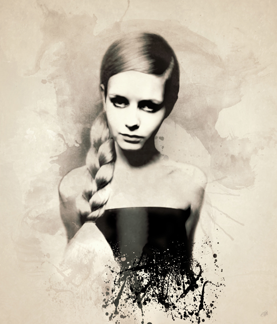 Twiggy Canvas Art Print