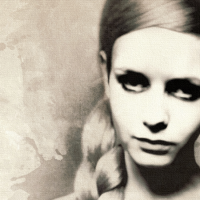 Twiggy Canvas Print Detail