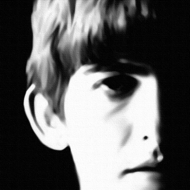 Beatles Canvas Art Print Detail