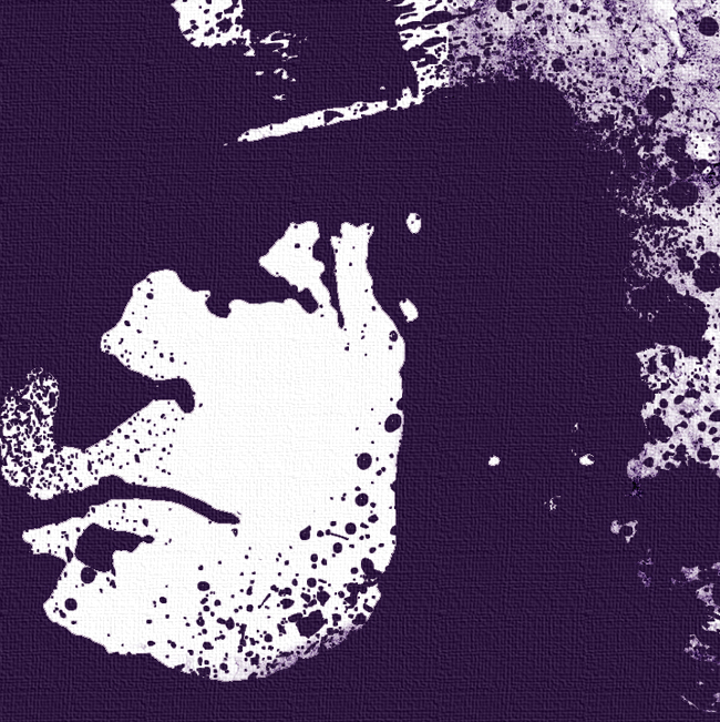 Marc Bolan, T-Rex Canvas Art Print